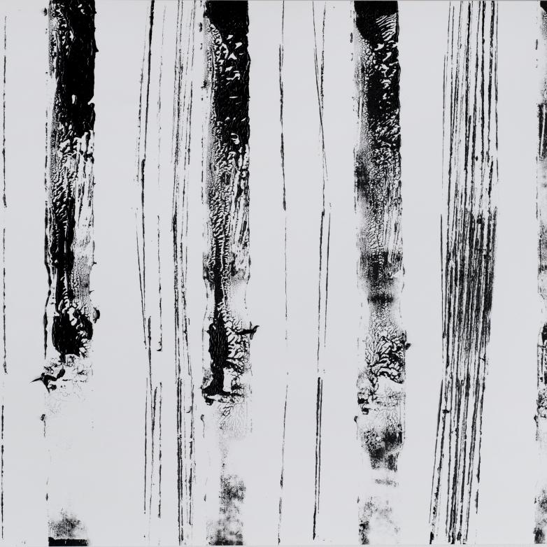2x5 verticales #3a 6.2013 (13''x19'')