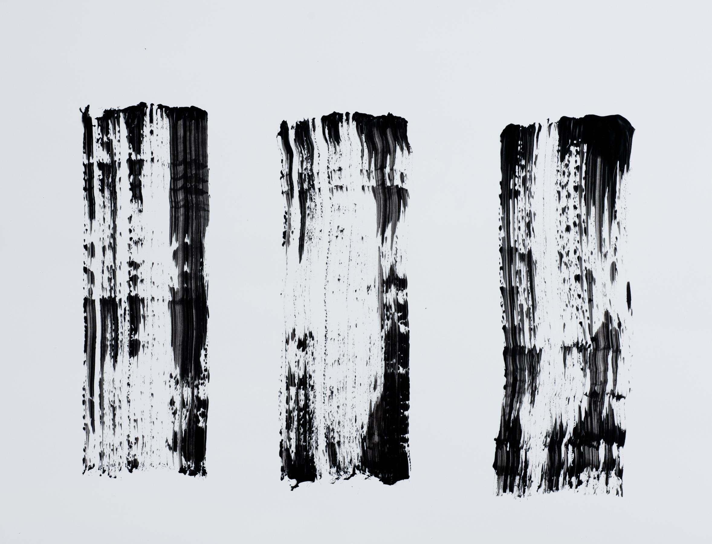 3 V #2 2012 (8.5''x11'')